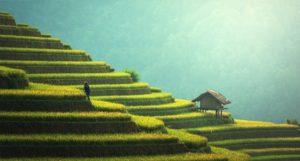 открытие страны тайланд