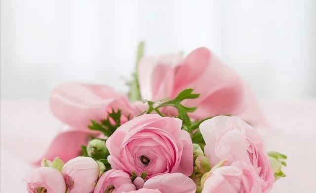 Цветы с доставкой по Москве: где и какие букеты можно купить